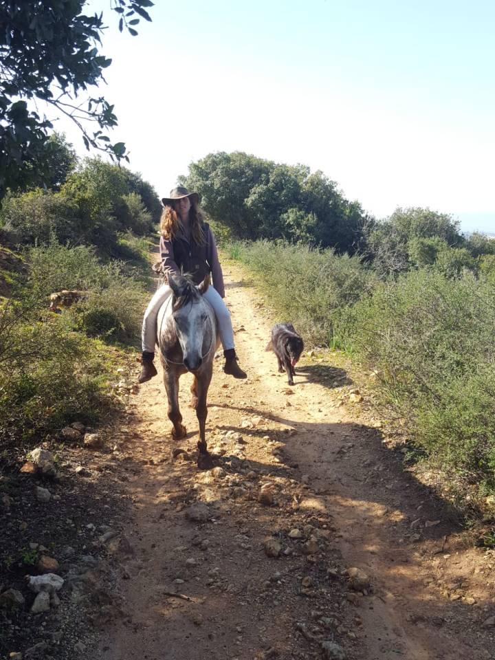 hada and horses03